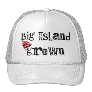 Isla grande crecida gorras de camionero