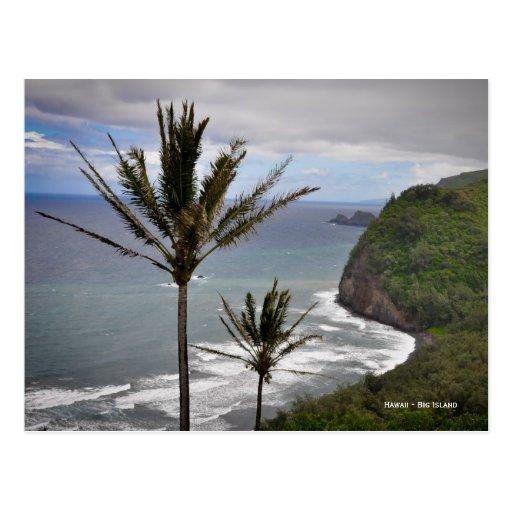 Isla grande de Hawaii - palmeras Postal