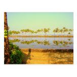 Isla grande de las palmas de Hawaii Tarjetas Postales