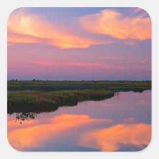 Isla la Florida de Merritt de la salida del sol Calcomanías Cuadradass Personalizadas
