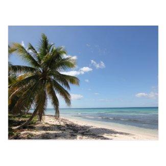 Isla Saona Caribbean Paradise Beach Postcard