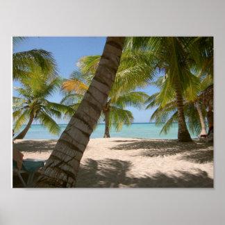 Isla Saona (Island) Dominican Republic Poster