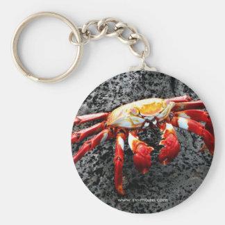 Isla Seymour, Galapagos, Red crab Keychain