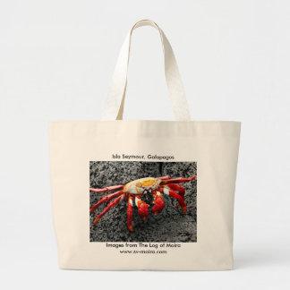Isla Seymour, las Islas Galápagos, cangrejo rojo Bolsas