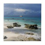 Isla tropical del paraíso del arrecife de coral tejas  cerámicas