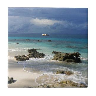 Isla tropical del paraíso del arrecife de coral azulejo cuadrado pequeño