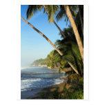 Isla tropical exótica