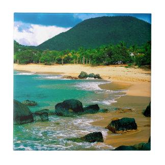 Isla tropical las orillas San Martín Azulejo Ceramica