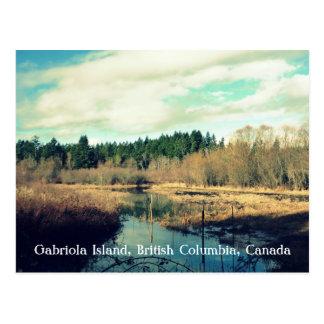 Island Canal Postcard