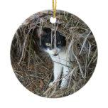 Island Cat at St. John Ceramic Ornament