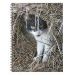 Island Cat at St. John Notebook
