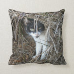 Island Cat at St. John Throw Pillow