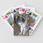 Island Cat Playing Cards