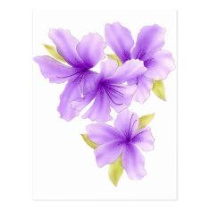 Island Flowers - purple Post Cards