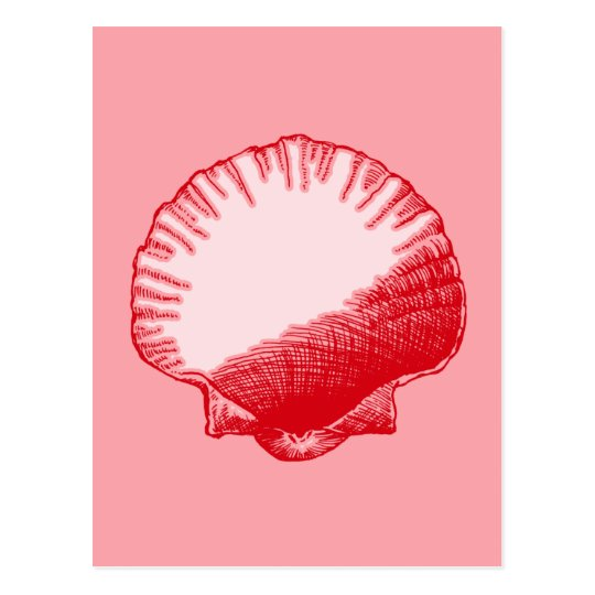 Island Ginger Red Sea Shell Postcard