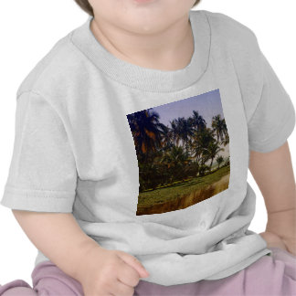 Island in backwaters tee shirts