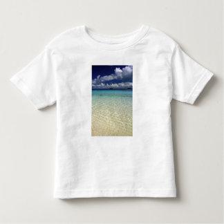 Island landscape, Vava'u Island,Tonga Toddler T-shirt