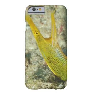 Island of Borneo, Sipadan Island Barely There iPhone 6 Case