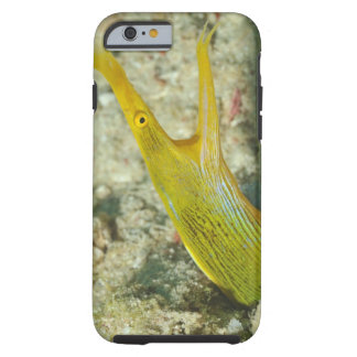 Island of Borneo, Sipadan Island Tough iPhone 6 Case