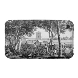 Island of Guam: Natives at Work in the Garden of t Case-Mate iPhone 3 Case