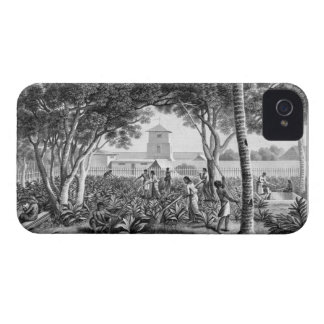 Island of Guam: Natives at Work in the Garden of t iPhone 4 Case-Mate Case