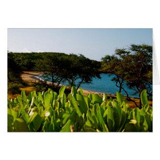 Island of Lanai in  Hawaii Card