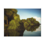 Island Of Trees - Nature Canvas Print (18x24)