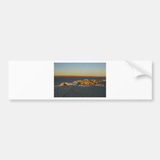 Island on the prairies in Saskatchewan, Canada Bumper Sticker