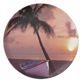 Island Paradise at Sunset Party Plates