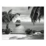 Island Pier Photo Print