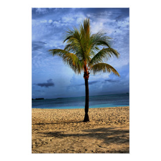 Island Tree Posters