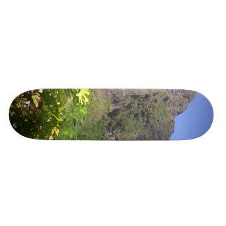 Island Vegetation Skate Board Deck