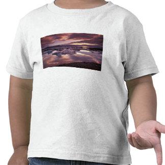 Islandia, laguna de Jokulsarlon, paisaje Camiseta