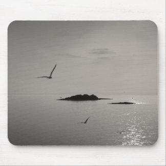 islands and seagulls mouse pad