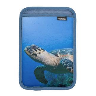 Islas Caimán pequeñas Islas Caimán 2 subacuático Fundas iPad Mini