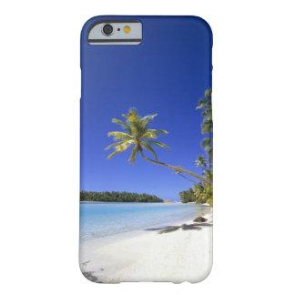 Islas de cocinero alineadas palma de la playa