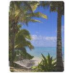 Islas de cocinero alineadas palma de la playa 2 cover de iPad