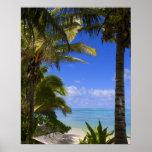 Islas de cocinero alineadas palma de la playa 2 póster