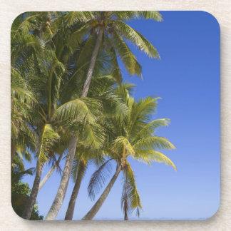 Islas de cocinero alineadas palma de la playa 3 posavasos de bebida