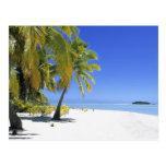 Islas de cocinero alineadas palma de la playa 3 postal