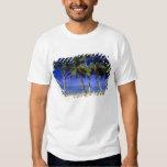 Islas de cocinero alineadas palma de la playa 4 camisas