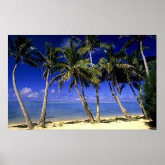 Islas de cocinero alineadas palma de la playa 4 impresiones