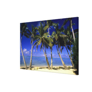 Islas de cocinero alineadas palma de la playa 6 lona estirada galerías