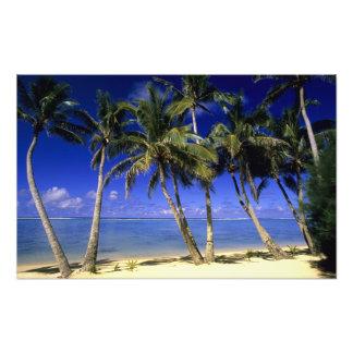 Islas de cocinero alineadas palma de la playa 6 impresion fotografica