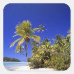 Islas de cocinero alineadas palma de la playa 7 calcomania cuadradas personalizadas