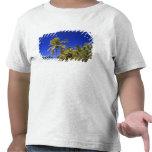 Islas de cocinero alineadas palma de la playa 7 camiseta