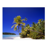 Islas de cocinero alineadas palma de la playa 7 tarjetas postales