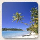 Islas de cocinero alineadas palma de la playa posavasos de bebidas