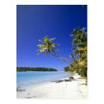 Islas de cocinero alineadas palma de la playa postales