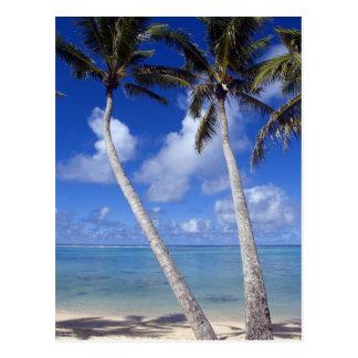 Islas de cocinero alineadas palma de la playa tarjeta postal